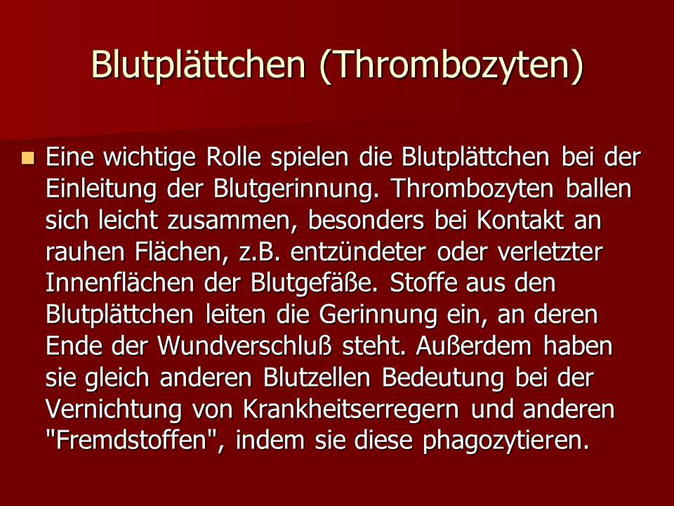 Blutplättchen (Thrombozyten) Eine wichtige Rolle spielen die Blutplättchen bei der Einleitung der Blutgerinnung. Thrombozyten ballen sich leicht zusam