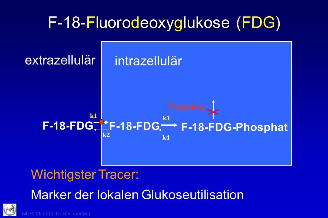 intrazellulär F-18-Fluorodeoxyglukose (FDG) extrazellulär k1 k2 F-18-FDG k3 k4 F-18-FDG-Phosphat Trapping Wichtigster Tracer: Marker der lokalen Gluko