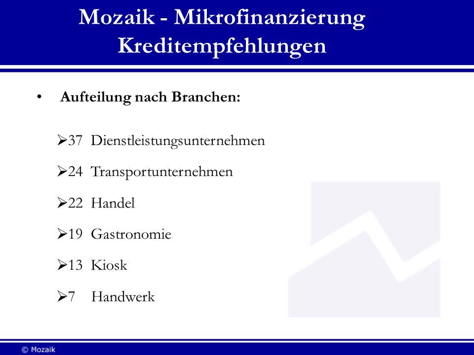 Mozaik - Mikrofinanzierung Kreditempfehlungen Aufteilung nach Branchen: 37 Dienstleistungsunternehmen 24 Transportunternehmen 22 Handel 19 Gastronomie