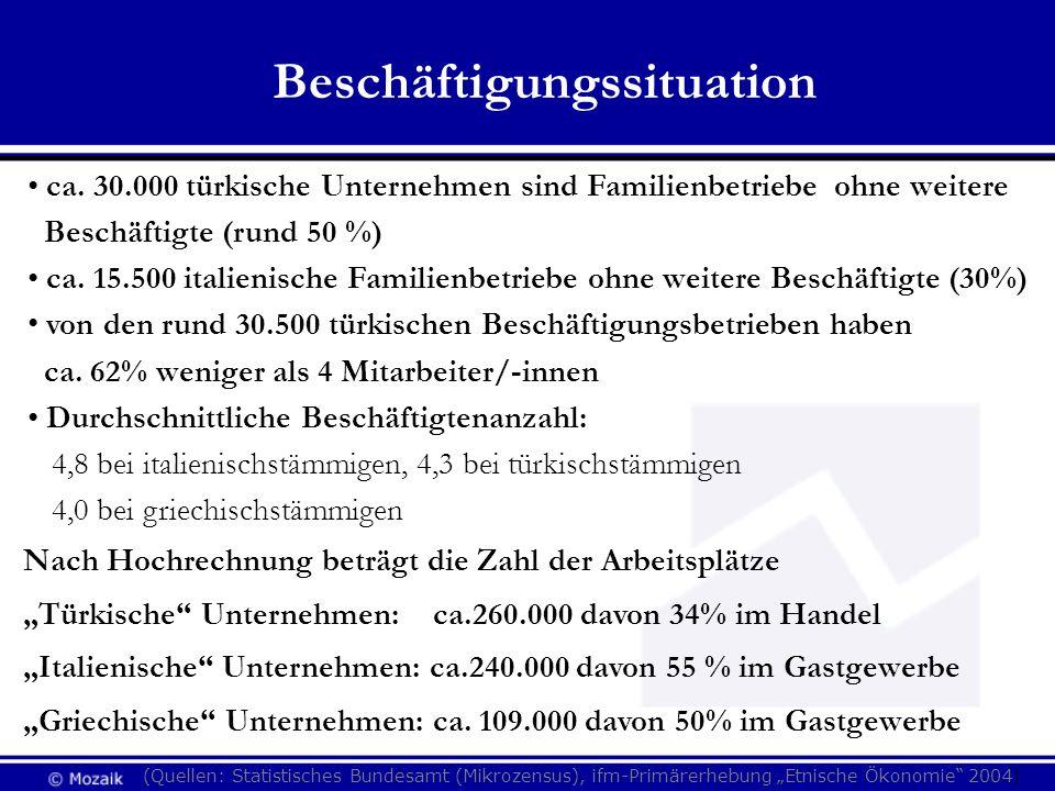 Beschäftigungssituation (Quellen: Statistisches Bundesamt (Mikrozensus), ifm-Primärerhebung Etnische Ökonomie 2004) ca. 30.000 türkische Unternehmen s