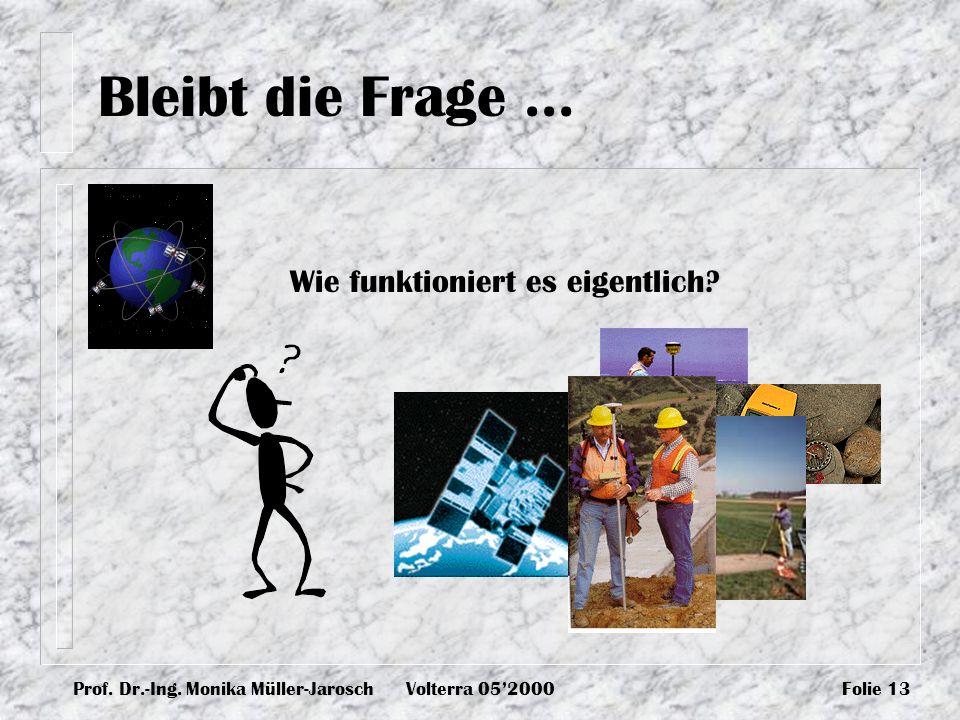 Prof. Dr.-Ing. Monika Müller-JaroschVolterra 052000Folie 13 Bleibt die Frage... Wie funktioniert es eigentlich?