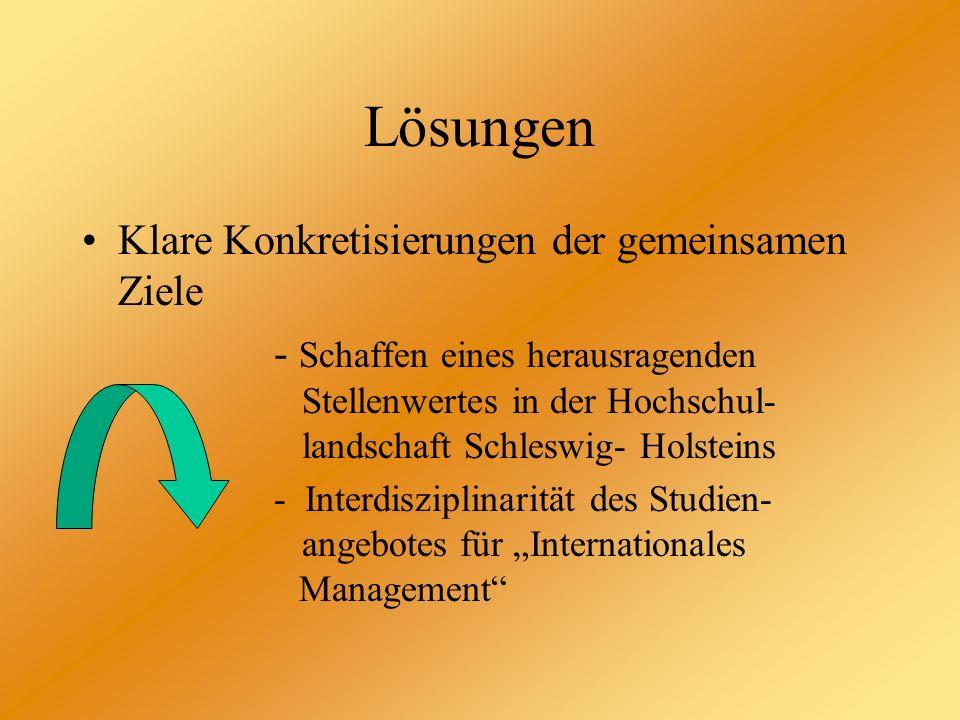 Lösungen Klare Konkretisierungen der gemeinsamen Ziele - Schaffen eines herausragenden Stellenwertes in der Hochschul- landschaft Schleswig- Holsteins