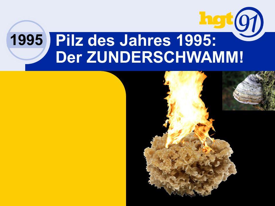1995 Pilz des Jahres 1995: Der ZUNDERSCHWAMM!