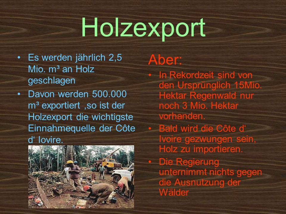 Holzexport Es werden jährlich 2,5 Mio. m³ an Holz geschlagen Davon werden 500.000 m³ exportiert,so ist der Holzexport die wichtigste Einnahmequelle de