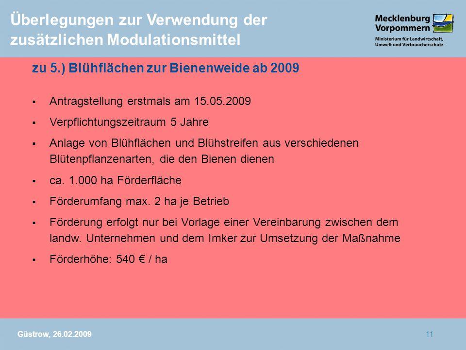 Güstrow, 26.02.200911 Überlegungen zur Verwendung der zusätzlichen Modulationsmittel zu 5.) Blühflächen zur Bienenweide ab 2009 Antragstellung erstmal
