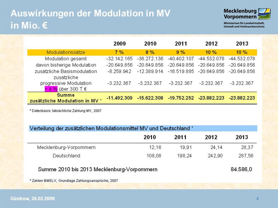 Güstrow, 26.02.20094 Auswirkungen der Modulation in MV in Mio.