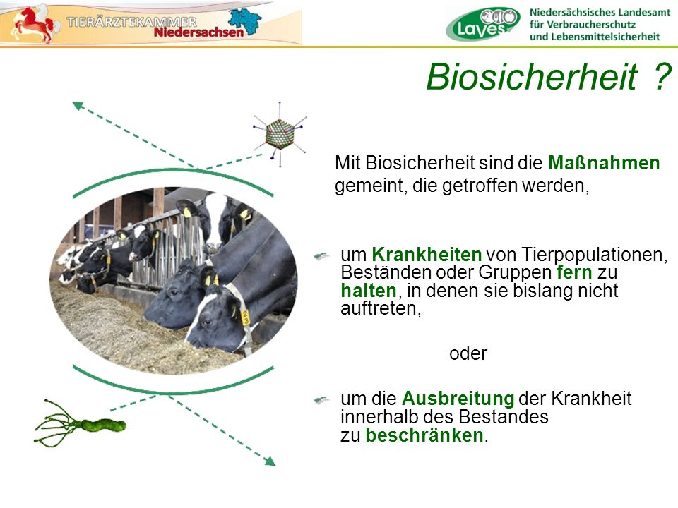 Biosicherheit ? um Krankheiten von Tierpopulationen, Beständen oder Gruppen fern zu halten, in denen sie bislang nicht auftreten, oder um die Ausbreit