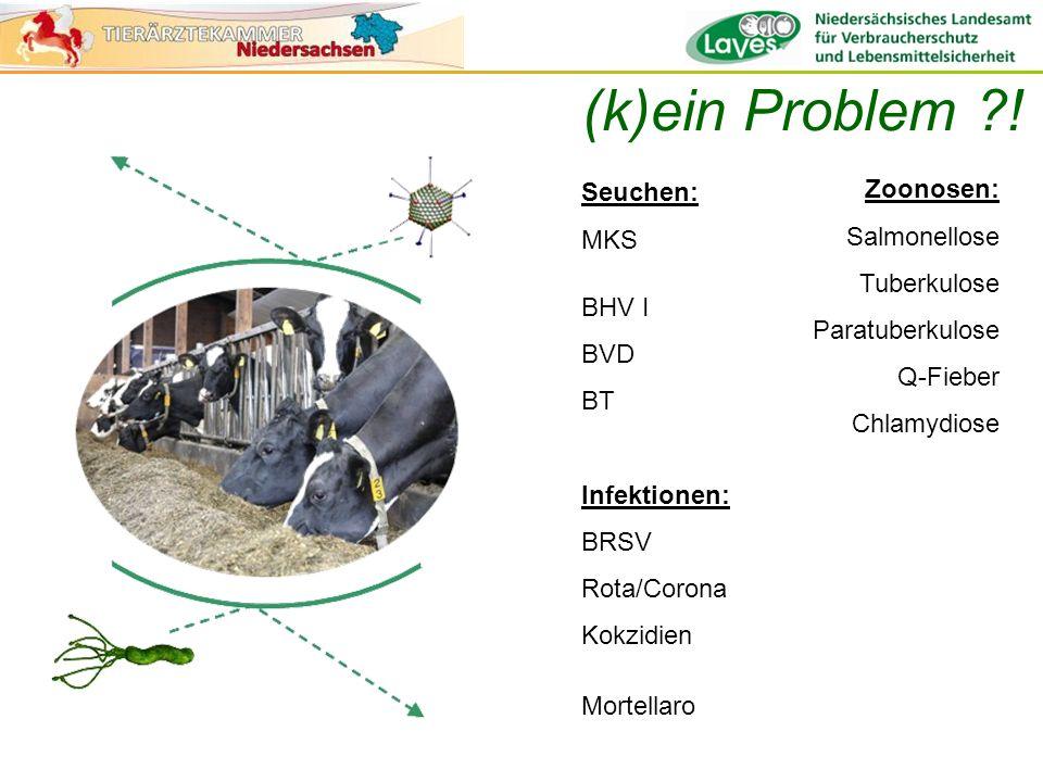 … die Ahnen Richtlinie zur Bekämpfung und zum Schutz vor BHV1 – und BVDV-Infektionen sowie zur Seuchenvorbeugung in Rinder haltenden Betrieben Januar 2000, Nds Leitlinie über hygienische Anforderungen beim Halten von Rindern März 2007, MV Richtlinie über Biosicherheitsmaßnahmen und Frühwarnsystem in Rinderhaltungen März 2007, SA Leitfaden Biosicherheit in Rinderhaltungen Februar 2013, Nds Leitlinien für hygienische Anforderungen an das Halten von Wiederkäuern Juni 2012, BMVEL Ablehnung durch die Landwirtschaft: nicht praktikabel Ablehnung durch die Landwirtschaft: nicht praktikabel
