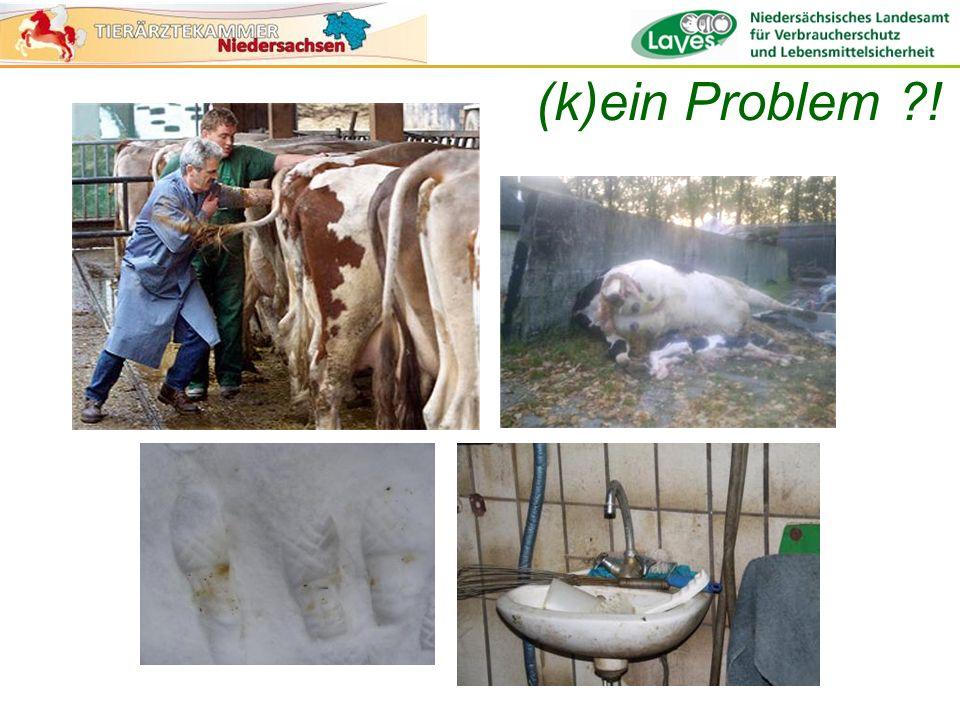 Anzahl infektiöser Dosen Maul- und Klauenseuche- Virus 1 Liter Rinder-Gülle2.000.000 1 Liter Milch32.000.000 Injektionsnadel, gebraucht zur Blutentnahme bei infiziertem Tier 10.000 Stiefel, kontaminiert mit 0.5 ml Speichel einer infizierten Kuh 500.000.000 Atem einer infizierten Kuh pro Tag100.000 Alexandersen et al., 2003 (k)ein Problem ?!