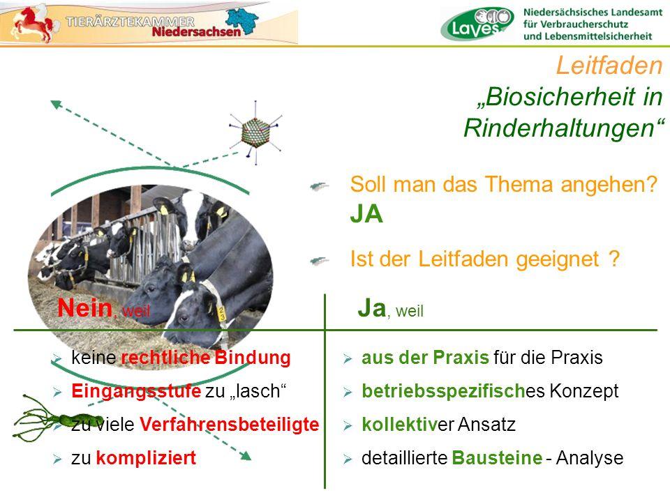 Soll man das Thema angehen? JA Ist der Leitfaden geeignet ? Leitfaden Biosicherheit in Rinderhaltungen keine rechtliche Bindung Eingangsstufe zu lasch