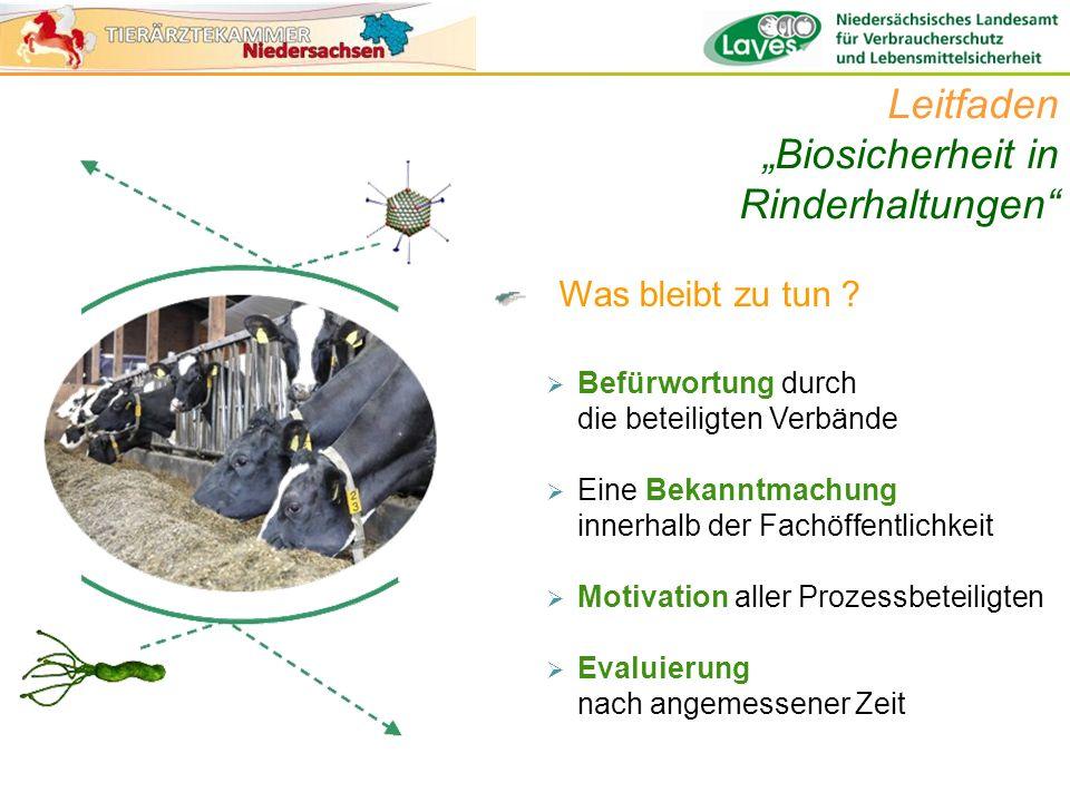 Was bleibt zu tun ? Leitfaden Biosicherheit in Rinderhaltungen Befürwortung durch die beteiligten Verbände Eine Bekanntmachung innerhalb der Fachöffen
