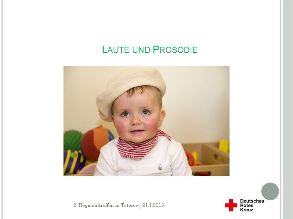S CHWERPUNKTE S PRACHENTWICKLUNG Grammatik Wörter und ihre Bedeutung Laute und Prosodie 0 1 Jahr2 Jahre 8 2.