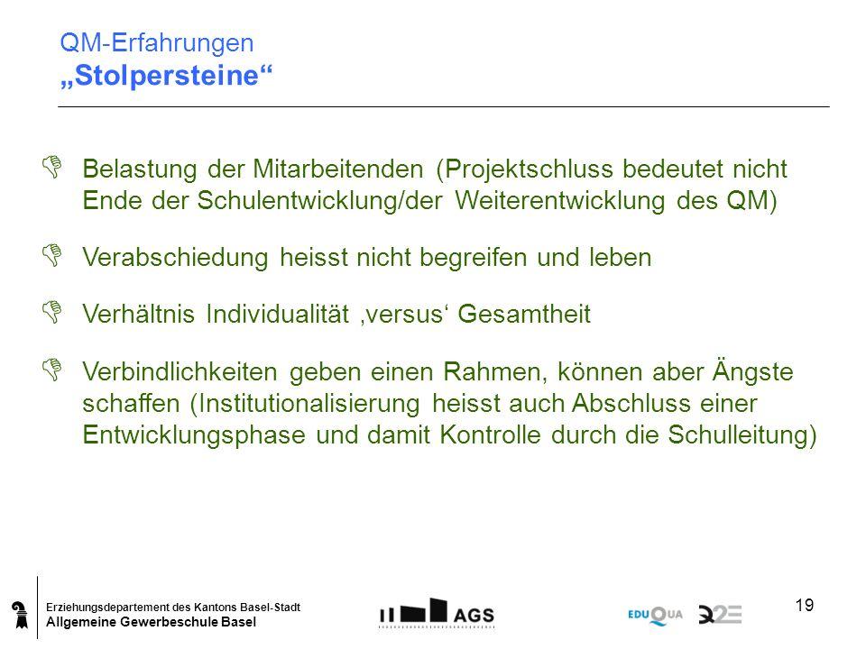 Erziehungsdepartement des Kantons Basel-Stadt Allgemeine Gewerbeschule Basel 19 D Belastung der Mitarbeitenden (Projektschluss bedeutet nicht Ende der