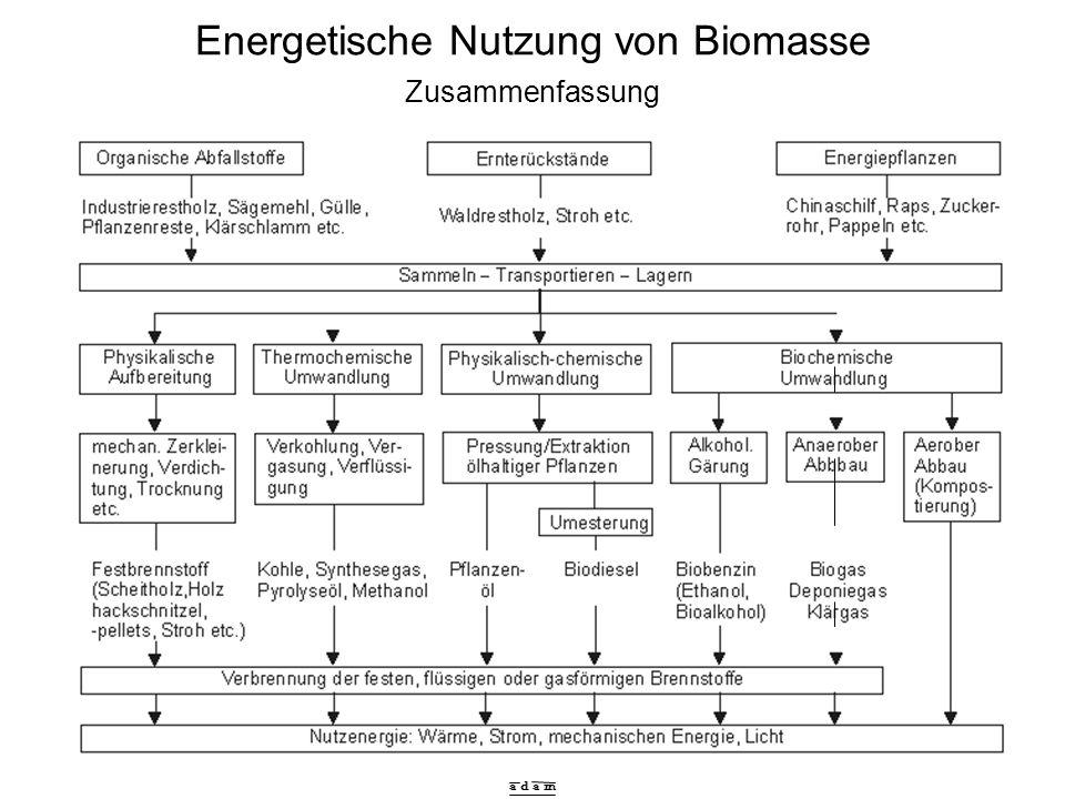 a d a m Energetische Nutzung von Biomasse Zusammenfassung
