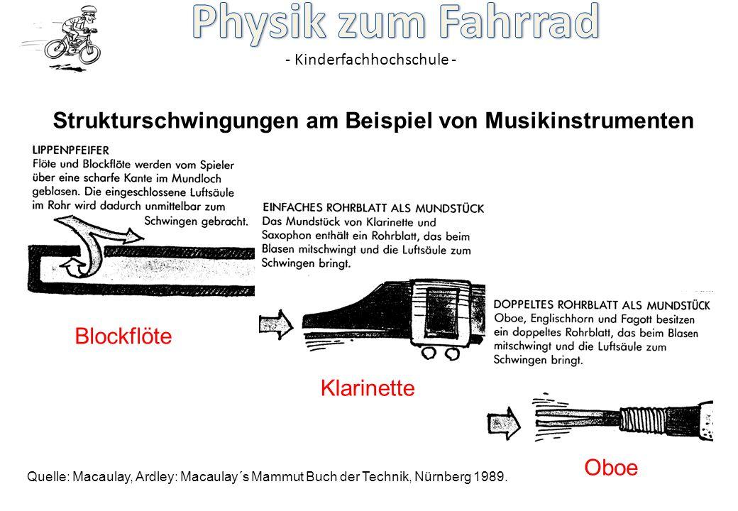 - Kinderfachhochschule - Strukturschwingungen am Beispiel von Musikinstrumenten Quelle: Macaulay, Ardley: Macaulay´s Mammut Buch der Technik, Nürnberg