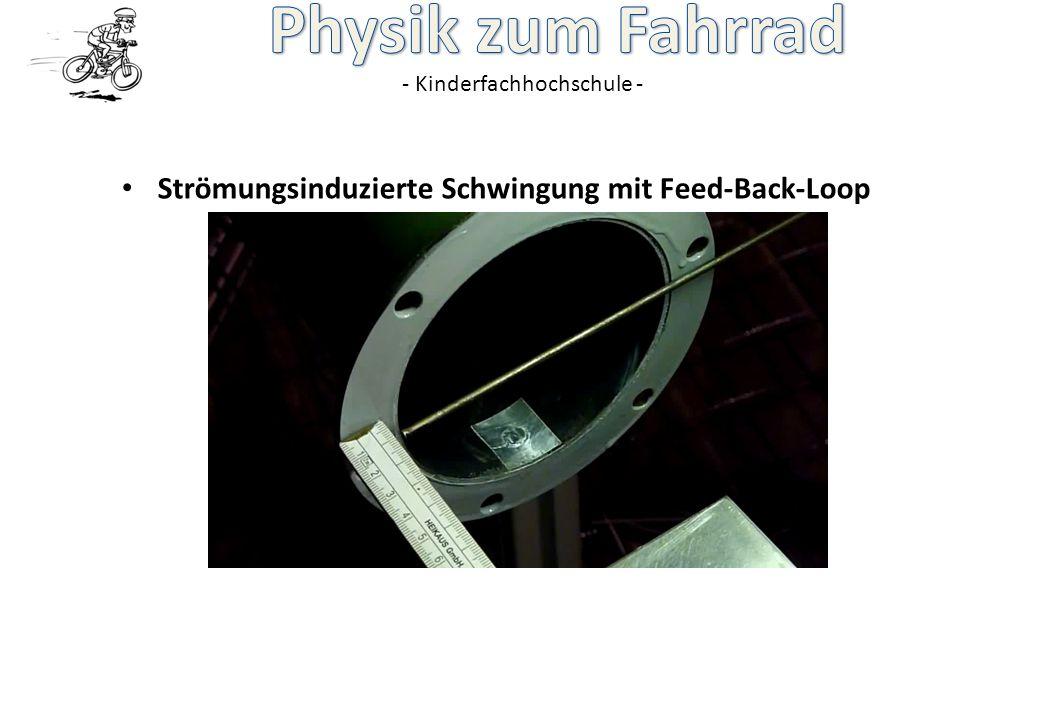 - Kinderfachhochschule - Strömungsinduzierte Schwingung mit Feed-Back-Loop