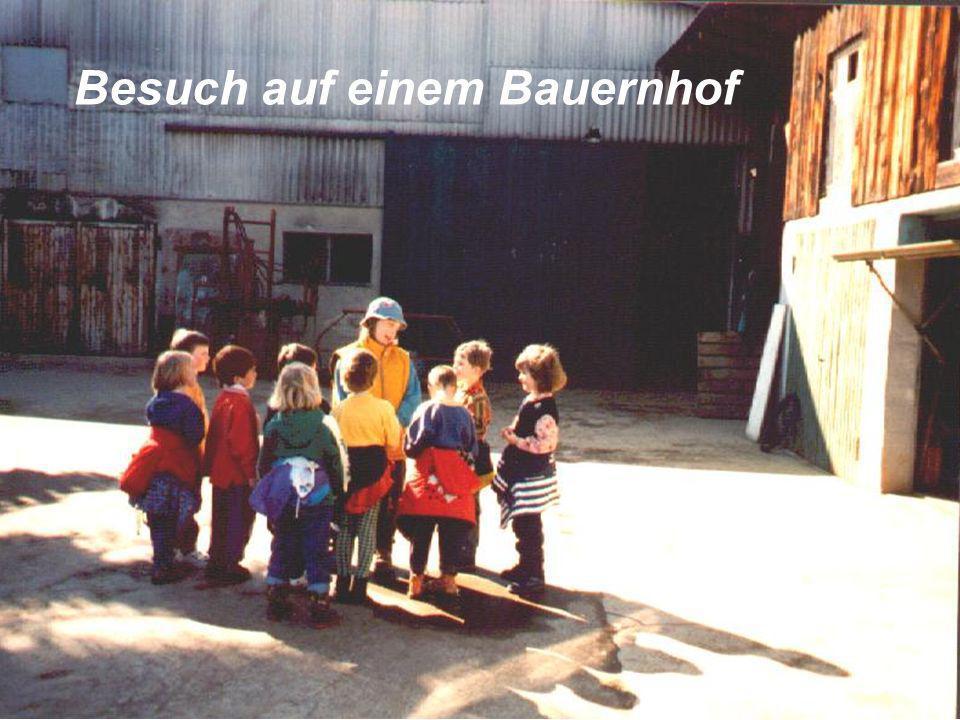 Die Öffnung des Kindergartens zu seinem Umfeld hin ist unverzichtbar. Der Kindergarten darf keine Insel bleiben, wo die Kinder täglich von denselben P