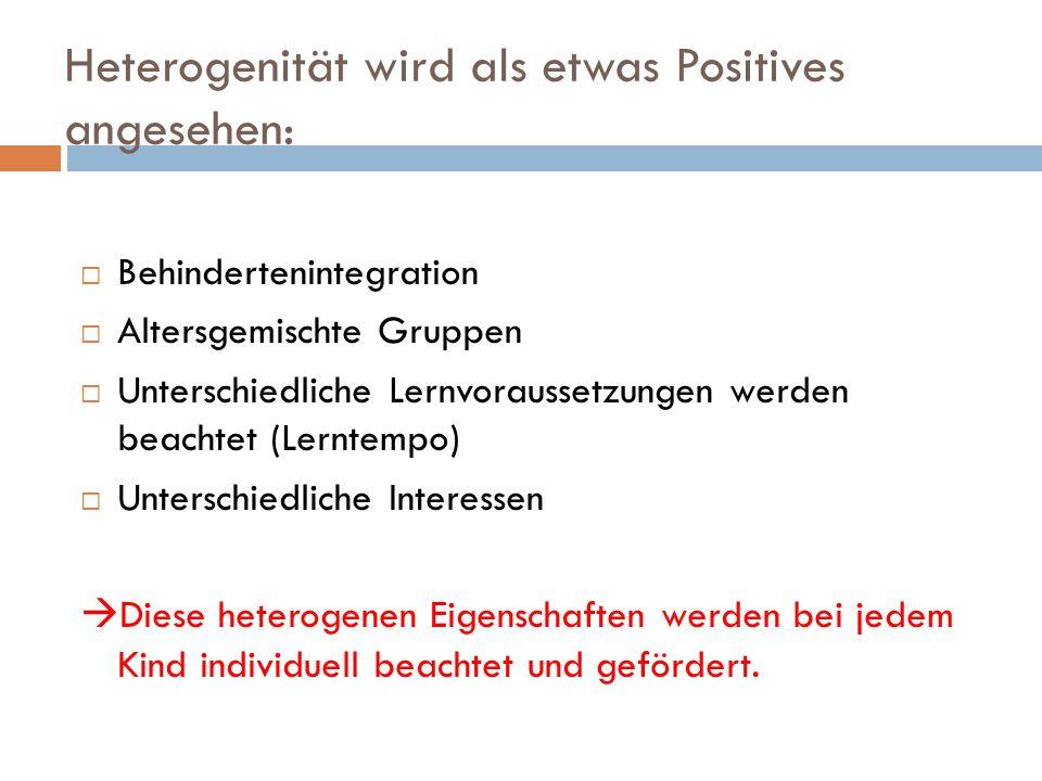 Heterogenität wird als etwas Positives angesehen: Behindertenintegration Altersgemischte Gruppen Unterschiedliche Lernvoraussetzungen werden beachtet