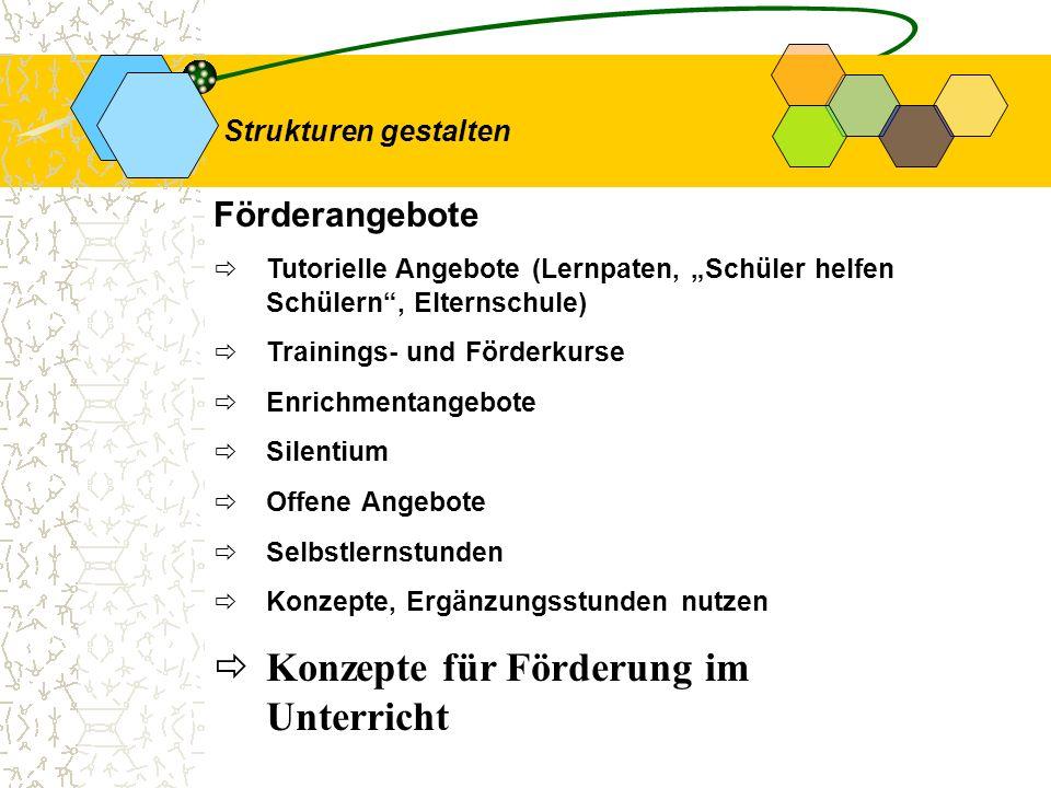 Förderangebote Tutorielle Angebote (Lernpaten, Schüler helfen Schülern, Elternschule) Trainings- und Förderkurse Enrichmentangebote Silentium Offene A