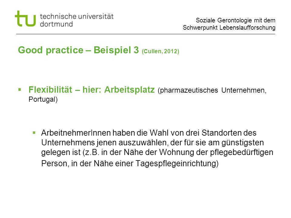 Soziale Gerontologie mit dem Schwerpunkt Lebenslaufforschung Flexibilität – hier: Arbeitsplatz (pharmazeutisches Unternehmen, Portugal) ArbeitnehmerIn