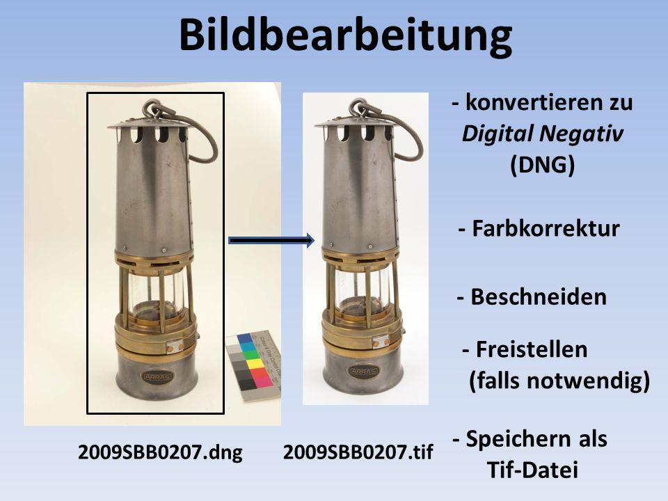 Bildbearbeitung 2009SBB0207.dng2009SBB0207.tif - Beschneiden - Farbkorrektur - Freistellen (falls notwendig) - Speichern als Tif-Datei - konvertieren