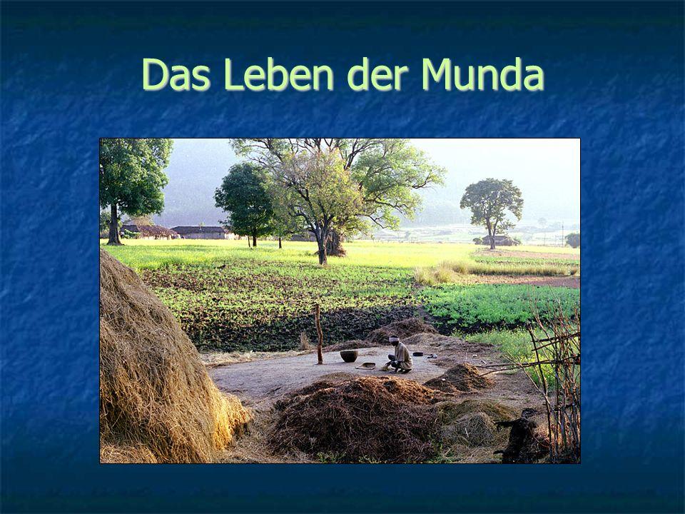 Kleinbäuerliche Mischwirtschaft, Naturreligion, Klan-Gemeinschaften, orale Überlieferung Bewässerter Reisbau Sammeln von Waldfrüchten Häusliche Viehwirtschaft TauschhandelJagd