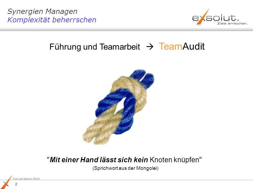 Copyright eXsolut GmbH Die Prüfplanung Frei definierbarer Zeitraum für Prüfpläne 1-Jahres-Planung, 3-Jahres-Planung Festlegen des gewünschten Quartals für ein Audit, des Schwerpunktsbereichs, der auditiert werden soll und des verantwortlichen Prüfungsleiters bzw.