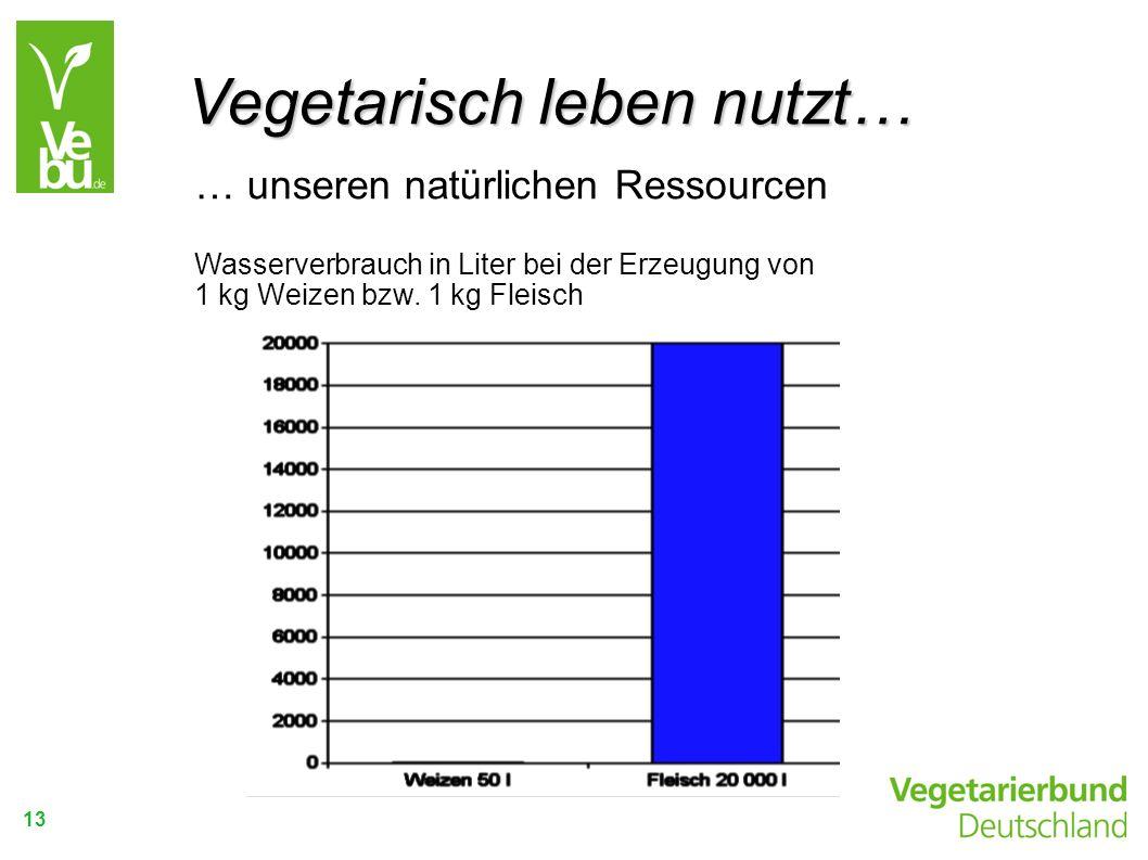 13 … unseren natürlichen Ressourcen Wasserverbrauch in Liter bei der Erzeugung von 1 kg Weizen bzw. 1 kg Fleisch Vegetarisch leben nutzt…