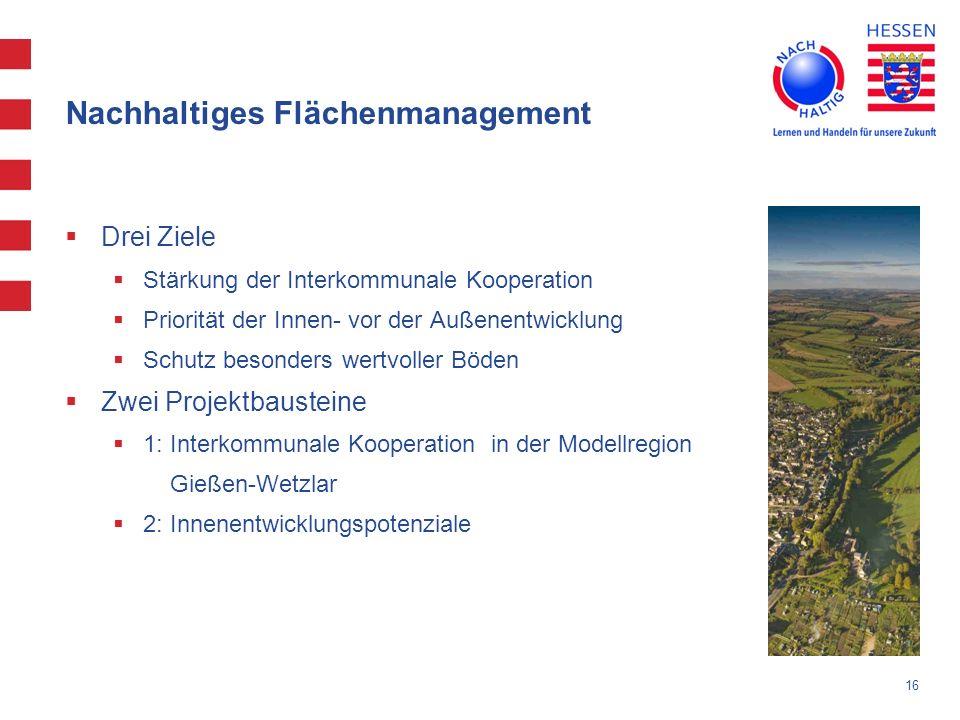 16 Nachhaltiges Flächenmanagement Drei Ziele Stärkung der Interkommunale Kooperation Priorität der Innen- vor der Außenentwicklung Schutz besonders we