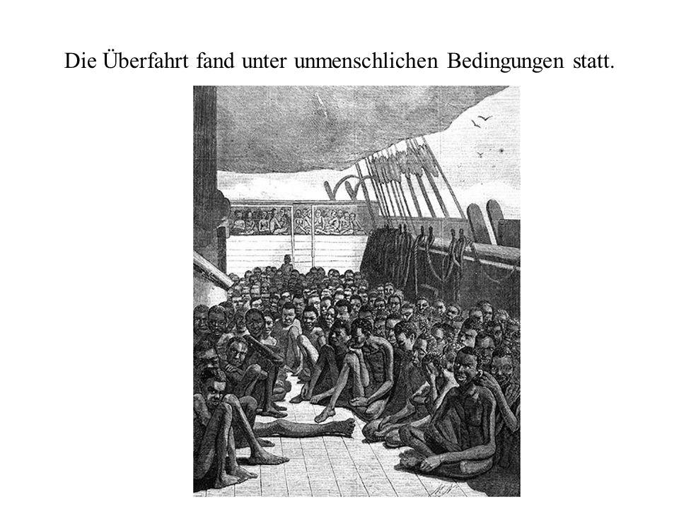 Die Überfahrt fand unter unmenschlichen Bedingungen statt.