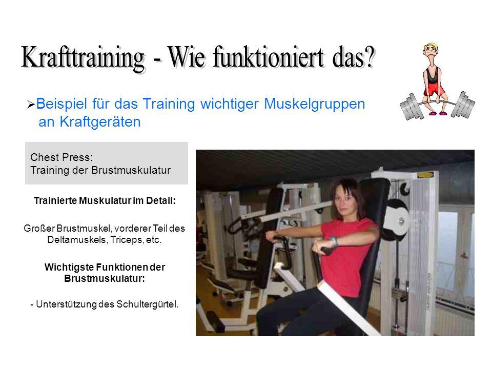 Beispiel für das Training wichtiger Muskelgruppen an Kraftgeräten Chest Press: Training der Brustmuskulatur Trainierte Muskulatur im Detail: Großer Brustmuskel, vorderer Teil des Deltamuskels, Triceps, etc.