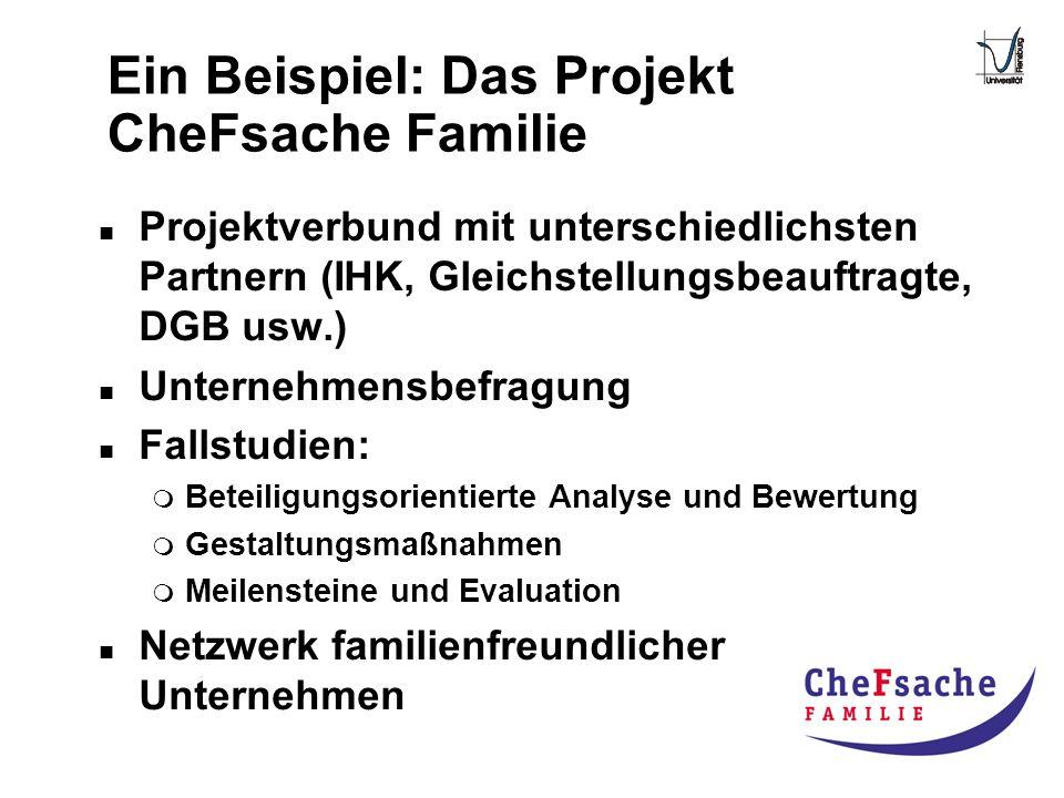 Ein Beispiel: Das Projekt CheFsache Familie n Projektverbund mit unterschiedlichsten Partnern (IHK, Gleichstellungsbeauftragte, DGB usw.) n Unternehme