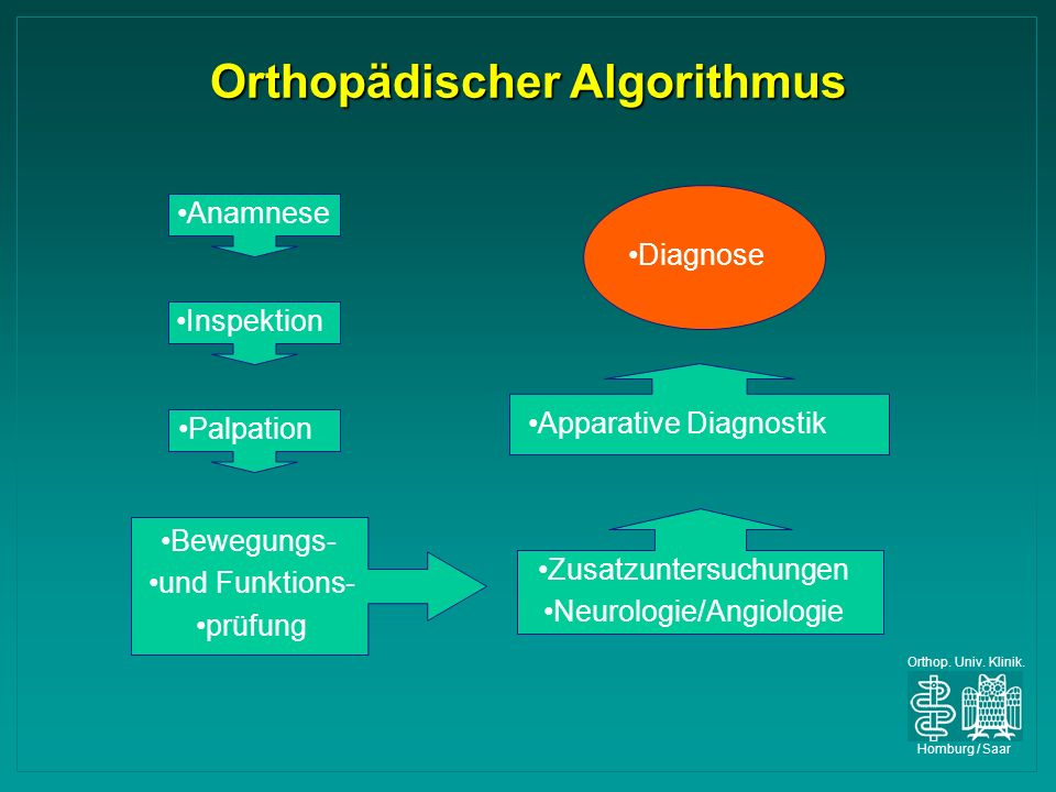 Orthop. Univ. Klinik. Homburg / Saar Orthopädischer Algorithmus Anamnese Inspektion Palpation Bewegungs- und Funktions- prüfung Apparative Diagnostik