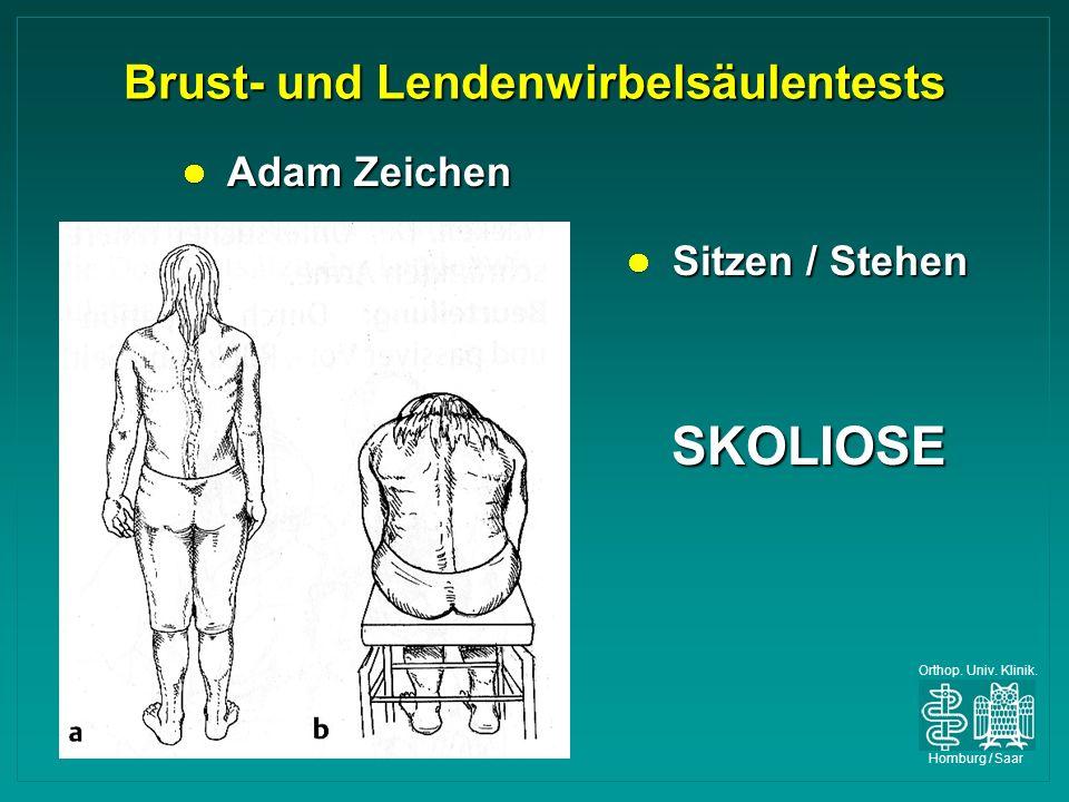 Orthop. Univ. Klinik. Homburg / Saar Brust- und Lendenwirbelsäulentests Adam Zeichen Adam Zeichen Sitzen / Stehen Sitzen / Stehen SKOLIOSE SKOLIOSE