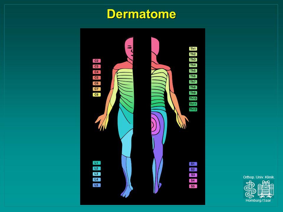 Orthop. Univ. Klinik. Homburg / Saar Dermatome