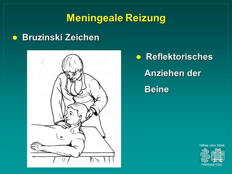 Orthop. Univ. Klinik. Homburg / Saar Meningeale Reizung Bruzinski Zeichen Bruzinski Zeichen Reflektorisches Anziehen der Beine Reflektorisches Anziehe