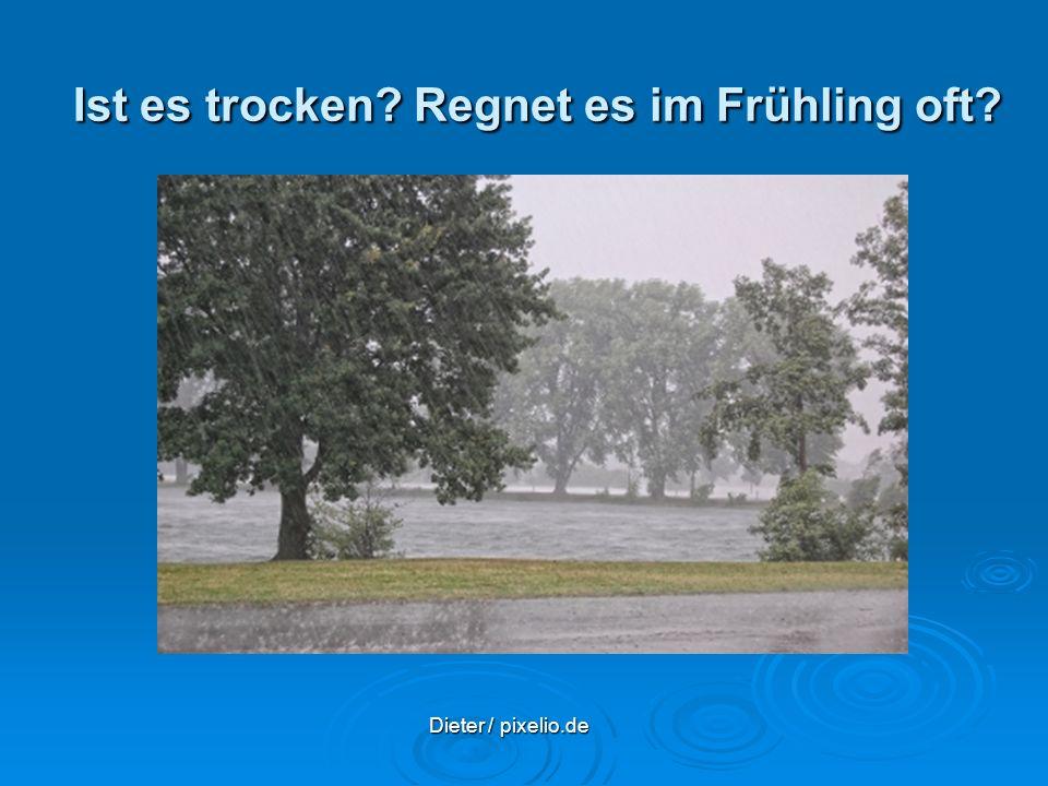 Ist es trocken? Regnet es im Frühling oft? Dieter / pixelio.de Dieter / pixelio.de