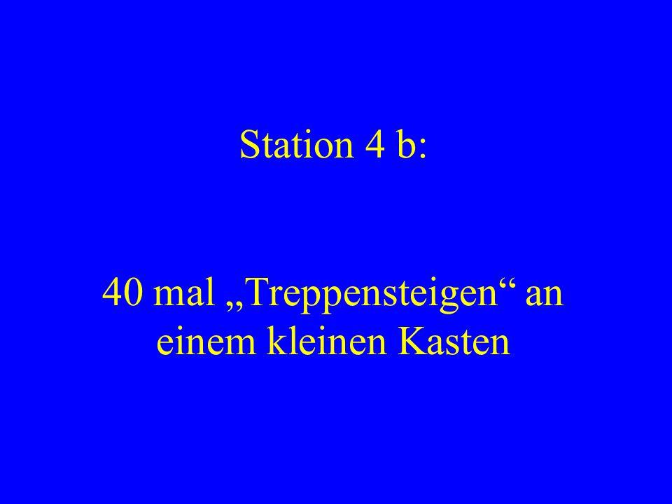 Station 4 b: 40 mal Treppensteigen an einem kleinen Kasten