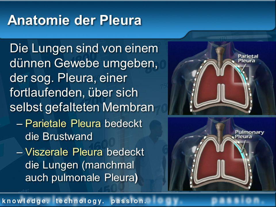Die Lungen sind von einem dünnen Gewebe umgeben, der sog. Pleura, einer fortlaufenden, über sich selbst gefalteten Membran –Parietale Pleura bedeckt d