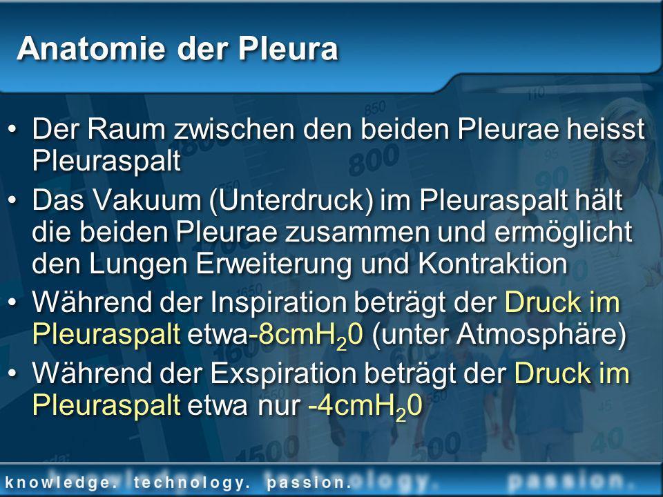 Der Raum zwischen den beiden Pleurae heisst Pleuraspalt Das Vakuum (Unterdruck) im Pleuraspalt hält die beiden Pleurae zusammen und ermöglicht den Lun