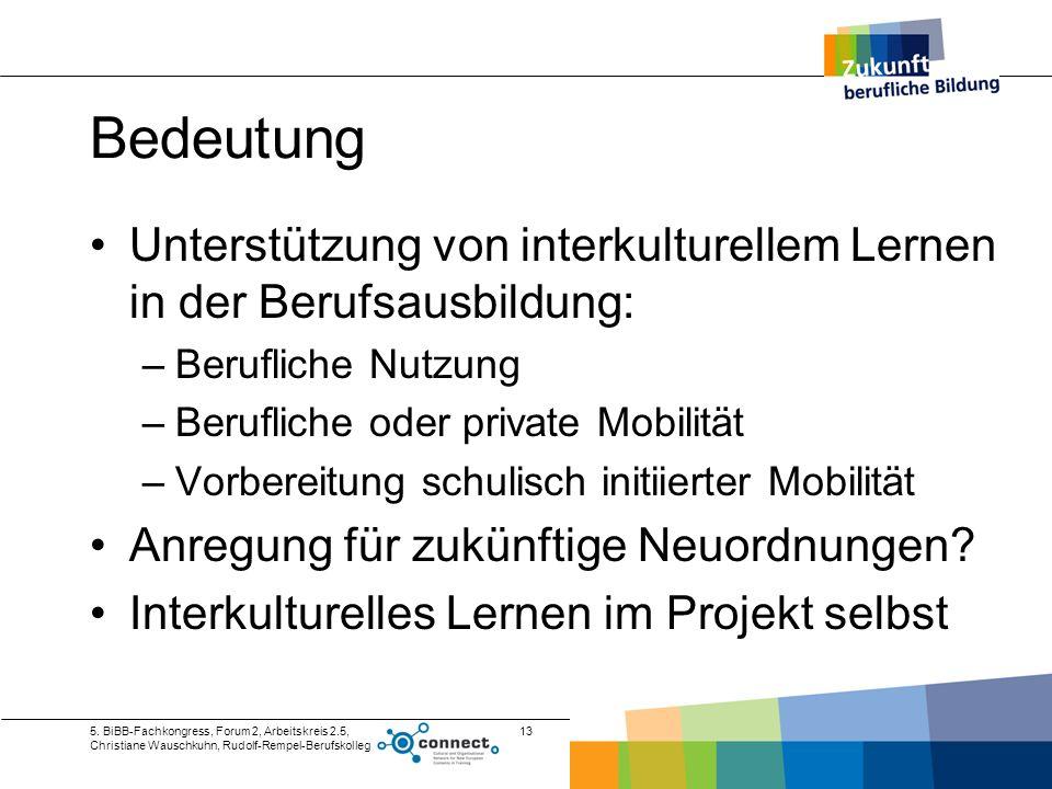 5. BiBB-Fachkongress, Forum 2, Arbeitskreis 2.5, Christiane Wauschkuhn, Rudolf-Rempel-Berufskolleg 13 Bedeutung Unterstützung von interkulturellem Ler