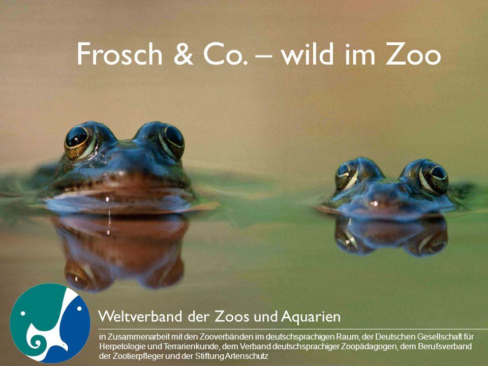 Frosch & Co. – wild im Zoo Weltverband der Zoos und Aquarien in Zusammenarbeit mit den Zooverbänden im deutschsprachigen Raum, der Deutschen Gesellsch