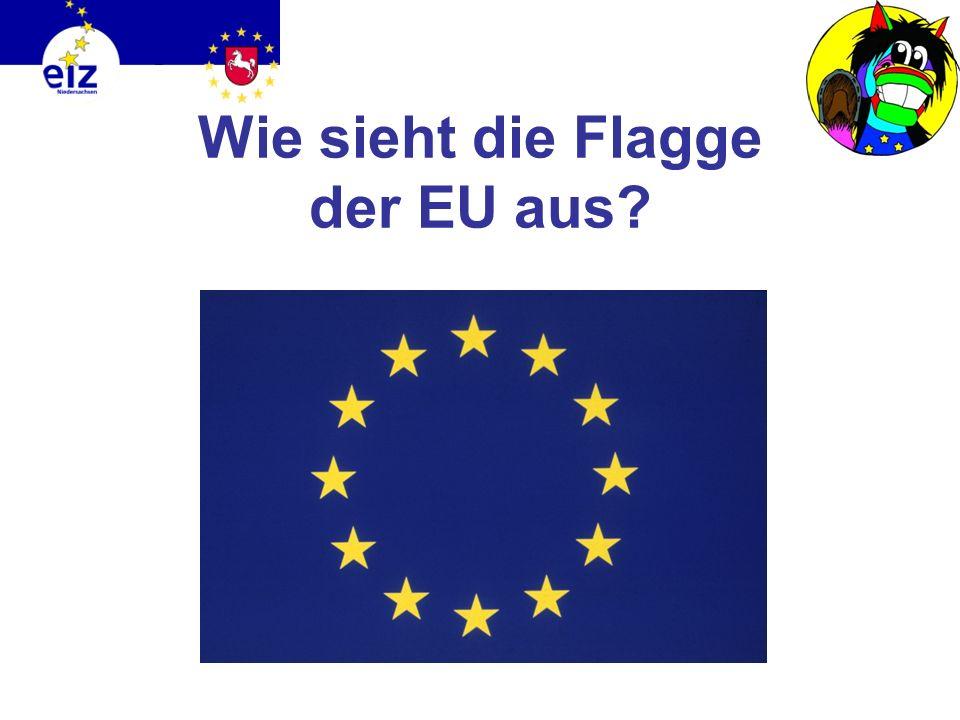 Ich habe mich über die EU erkundigt. Wusstet ihr, dass die EU, genauso wie jedes Land, auch eine eigene Flagge hat? Und die EU hat noch mehr Symbole,