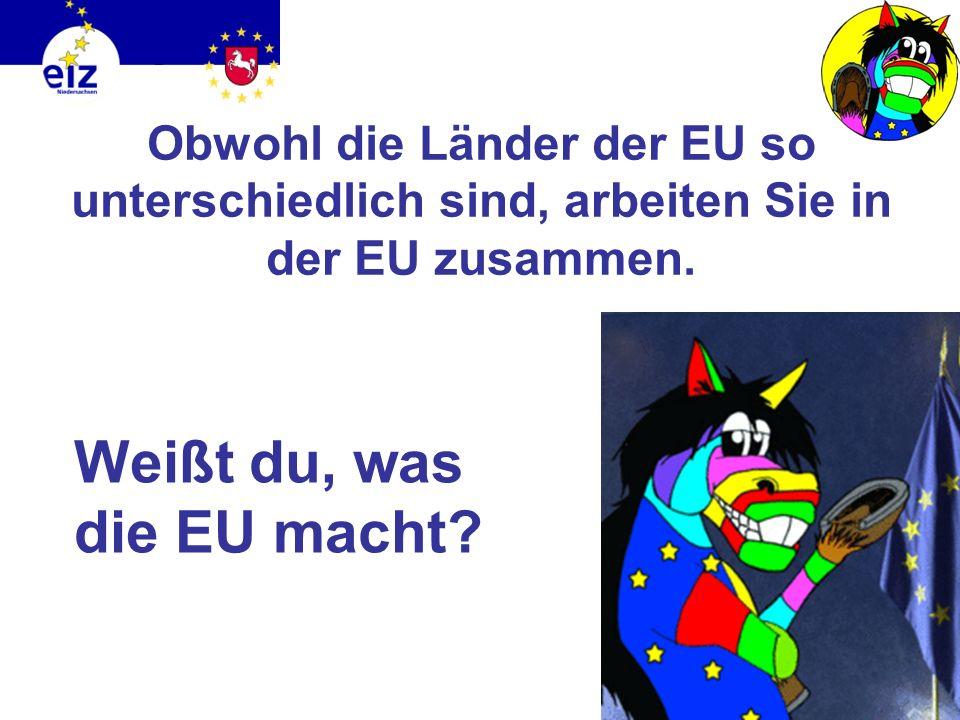 27 Staaten 500 Millionen Menschen 4.324.782 km² 23 Amtssprachen So bunt ist Europa!