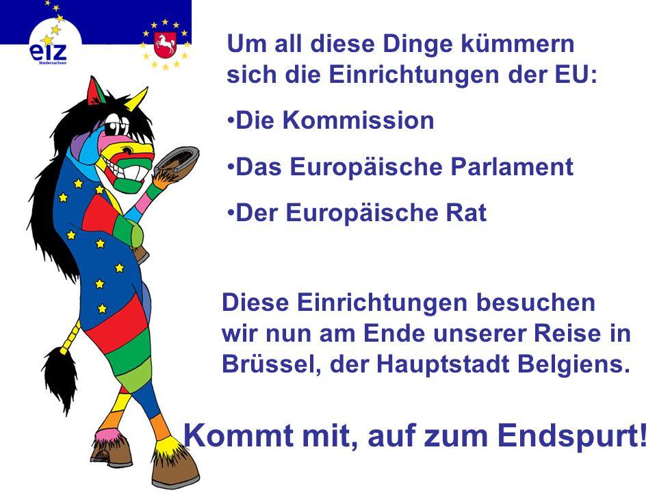Die EU… sorgt für Frieden & Völkerverständigung kümmert sich darum, dass es allen Menschen gut geht fördert die Demokratie schützt die Menschenrechte