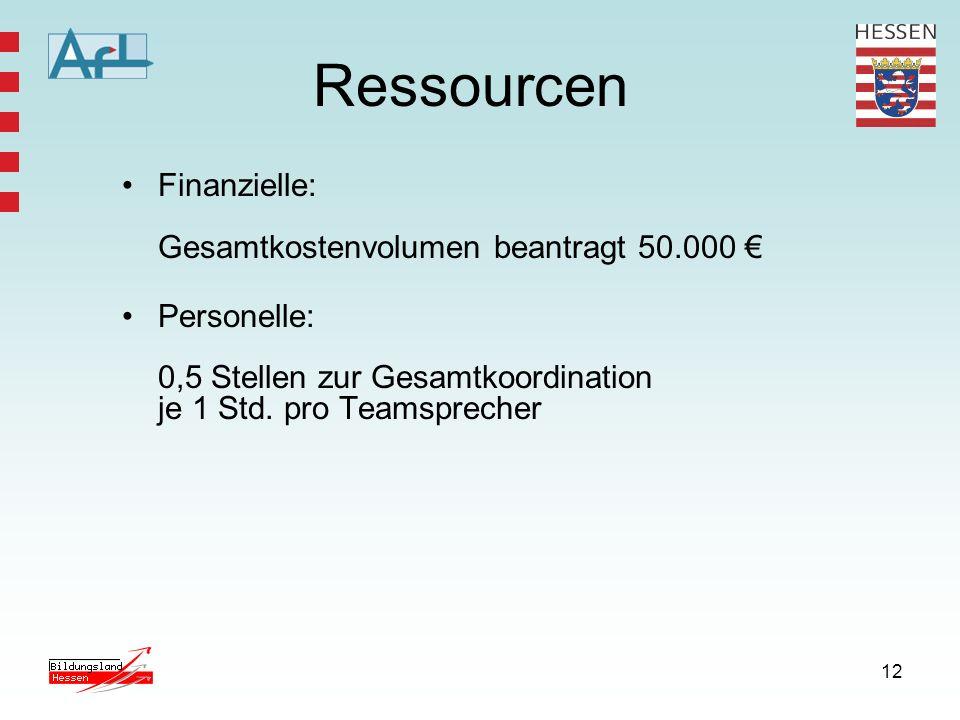 12 Ressourcen Finanzielle: Gesamtkostenvolumen beantragt 50.000 Personelle: 0,5 Stellen zur Gesamtkoordination je 1 Std. pro Teamsprecher