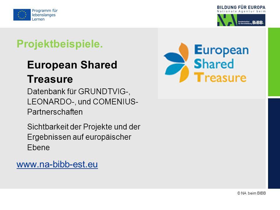© NA beim BIBB Projektbeispiele. European Shared Treasure Datenbank für GRUNDTVIG-, LEONARDO-, und COMENIUS- Partnerschaften Sichtbarkeit der Projekte
