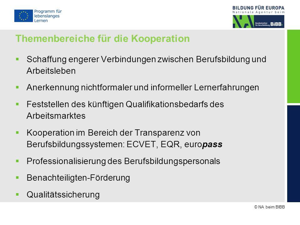 © NA beim BIBB Themenbereiche für die Kooperation Schaffung engerer Verbindungen zwischen Berufsbildung und Arbeitsleben Anerkennung nichtformaler und