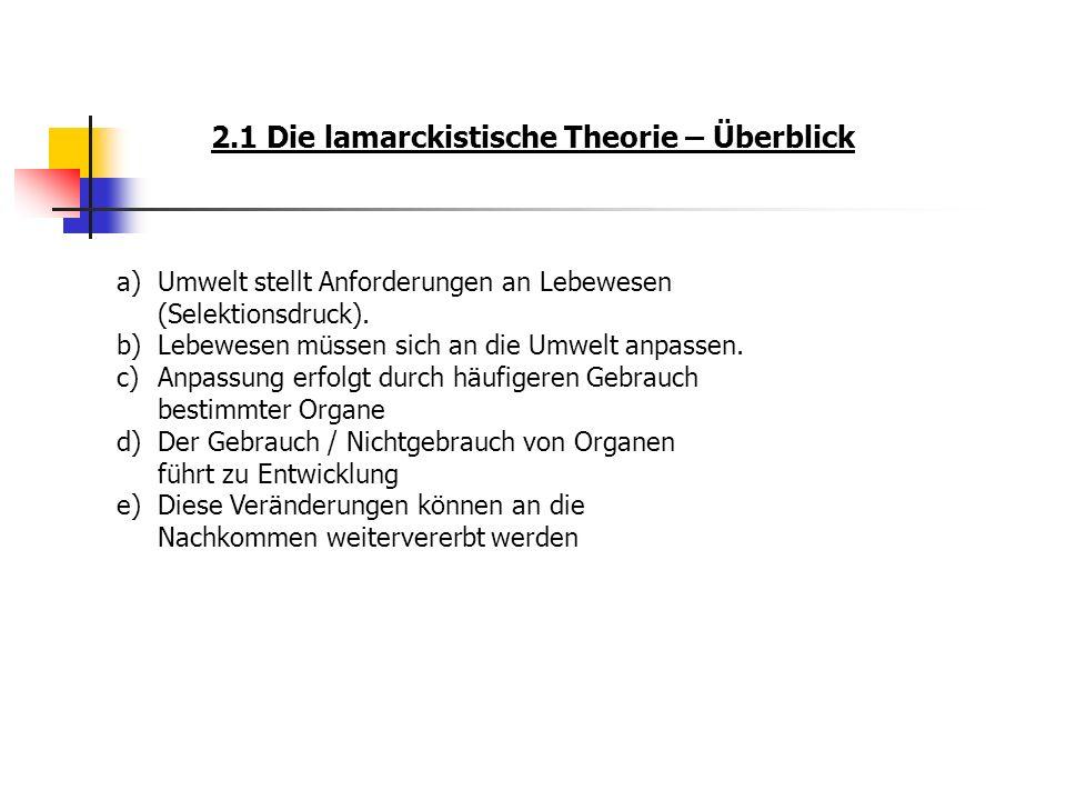 2.1 Die lamarckistische Theorie – Überblick a)Umwelt stellt Anforderungen an Lebewesen (Selektionsdruck). b)Lebewesen müssen sich an die Umwelt anpass