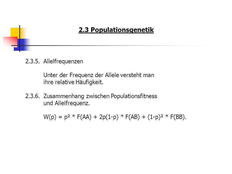 2.3 Populationsgenetik 2.3.5.Allelfrequenzen Unter der Frequenz der Allele versteht man ihre relative Häufigkeit. 2.3.6.Zusammenhang zwischen Populati
